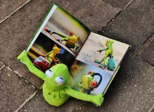 El mundo animal a través de la literatura infantil